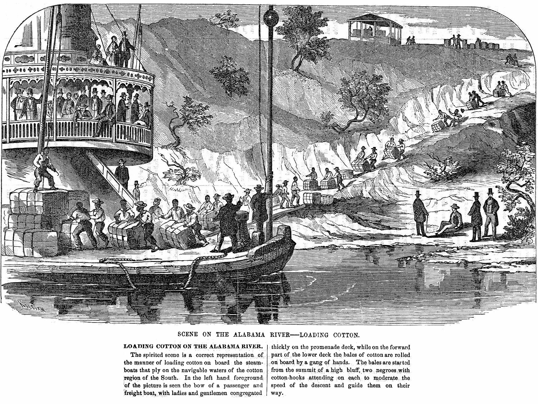1865 illustration of loading cotton on steamboats